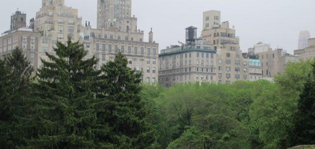 New York, 2012 (Hoffmann Tamás felvétele)