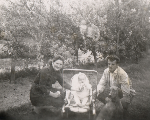Család - Matyival, a vizslával (Csengőd, hatvanas évek)