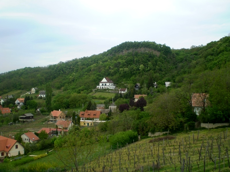 A Farkas-villa Szigligeten (Forrás: villakamonko.hu)