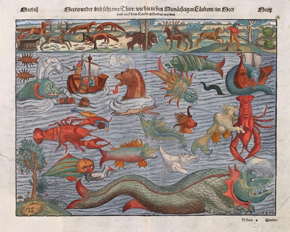 Egy XVI. századi ábrázolás