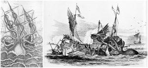Pierre Denys de Montfort kraken-metszetei