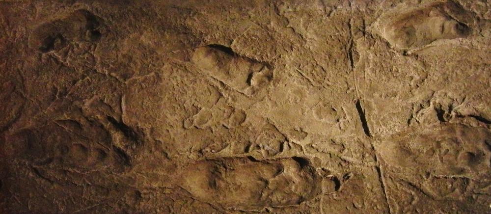 A Tanzániában talált, több millió éves lábnyomok